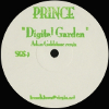 Digital Garden (Adam Goldstone Remix) [Jacket]