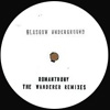 The Wonderer Remixes [Jacket]